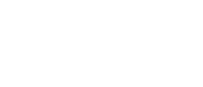 DG Verlag